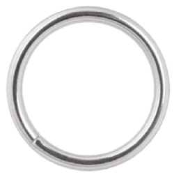 Steel Continuous/Seamless Ring