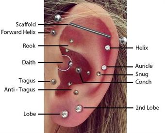 hål i brosket i örat